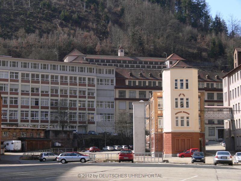 Firmengebäude in Schramberg
